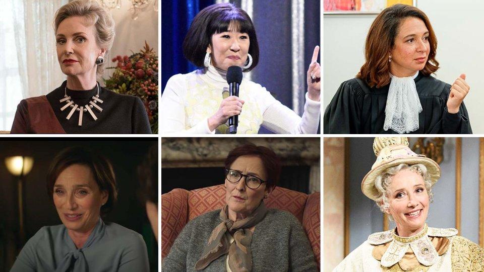 بهترین بازیگر مهمان زن در سریال کمدی