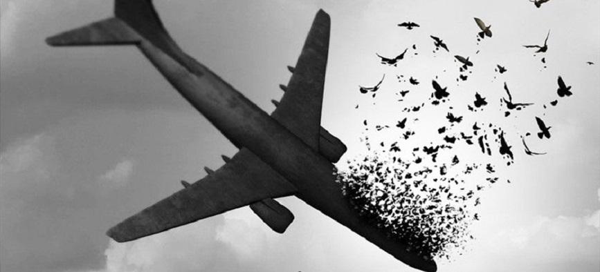 واکنش هنرمندان به سقوط هواپیمای اوکراینی
