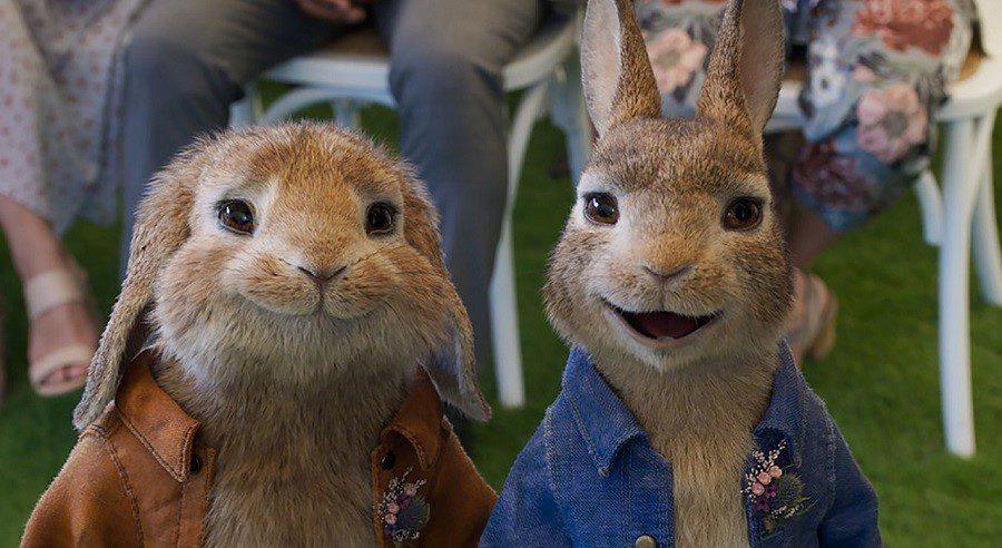 ١١ انیمیشن ٢٠٢٠ که بی صبرانه منتظرشان هستیم- ٤-پیتر خرگوشه٢: فراری / Peter Rabbit 2: The Runaway