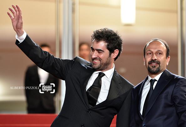 اصغر فرهادی و شهاب حسینی بر فرش قرمز فیلم «فروشنده» در شصت و نهمین جشنواره فیلم کن2016